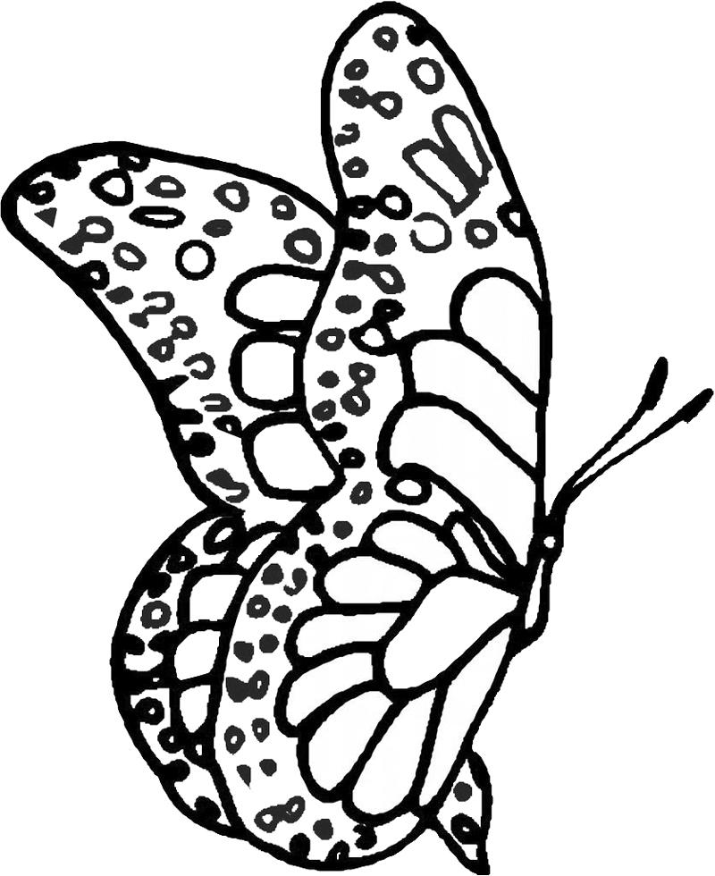 disegni da colorare delle farfalle