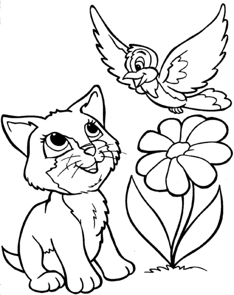 Amato Disegno di Gattino e Uccellino da colorare per bambini  QL23