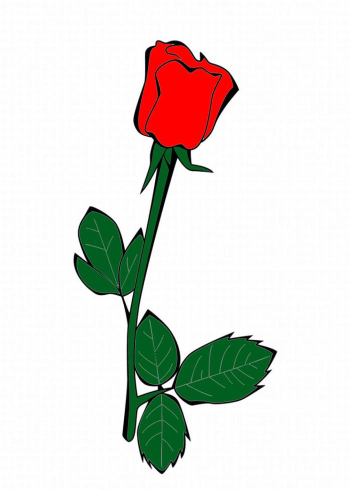 Disegno Di La Rosa A Colori Per Bambini Disegnidacolorareonlinecom