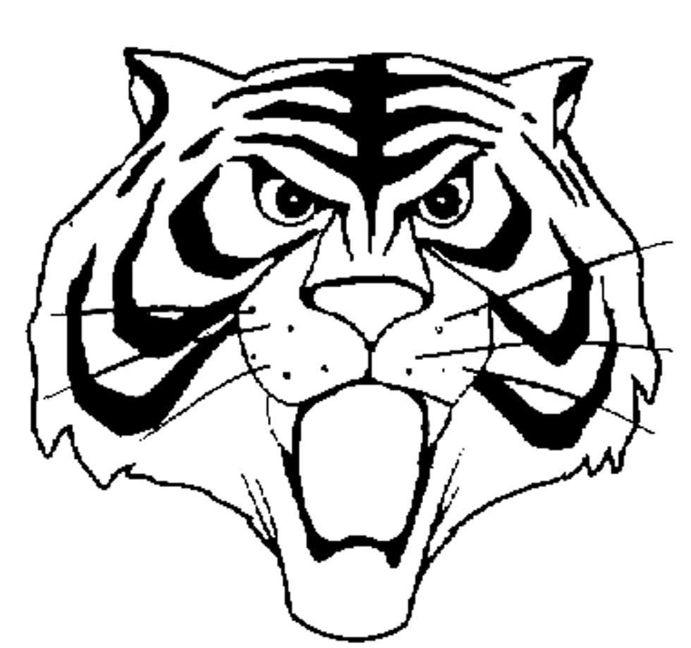 Foto uomo tigre gratis