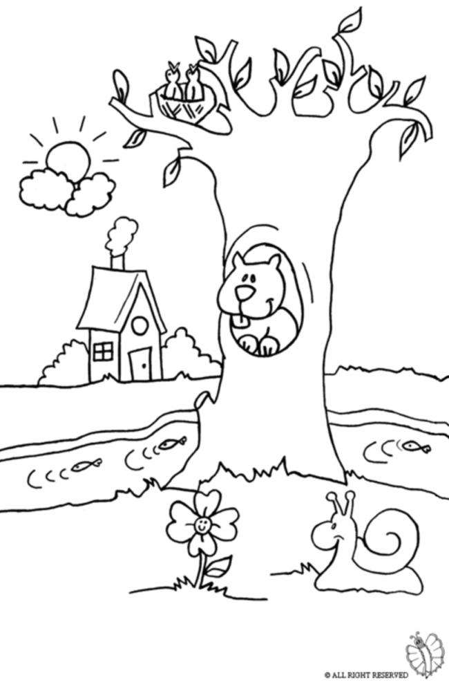 Disegno Di Paesaggio Naturale Da Colorare Per Bambini