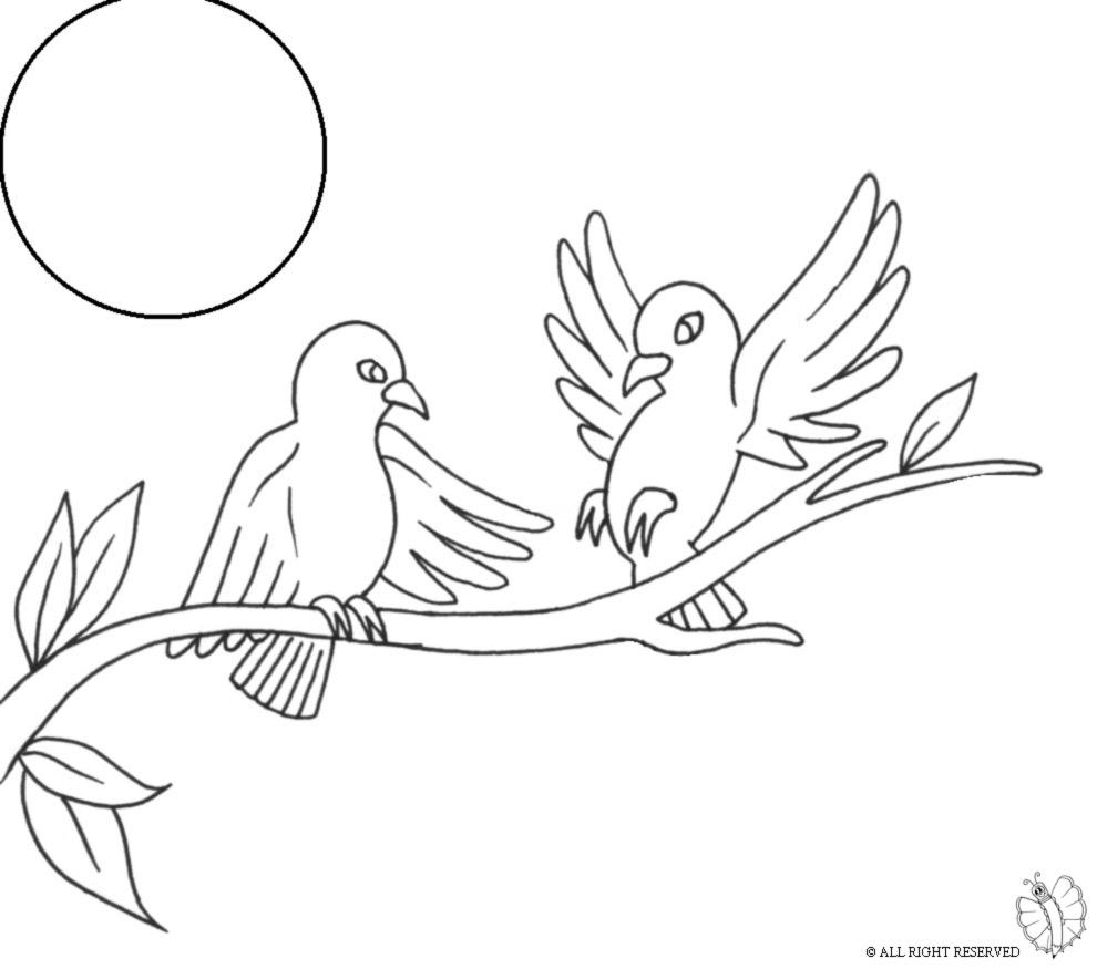 Famoso Disegno di Uccelli sull'albero da colorare per bambini  FU14