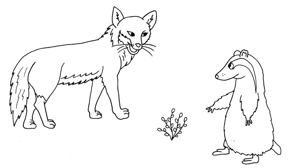 Disegno Di La Volpe E Il Suricata Da Colorare Per Bambini